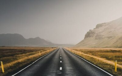 Making Sense of the Road Ahead