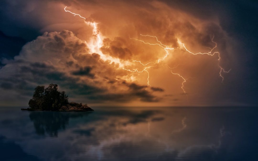Holding Firm in the Storm, Aligning for the Future